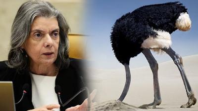 carmen-avestruz.png