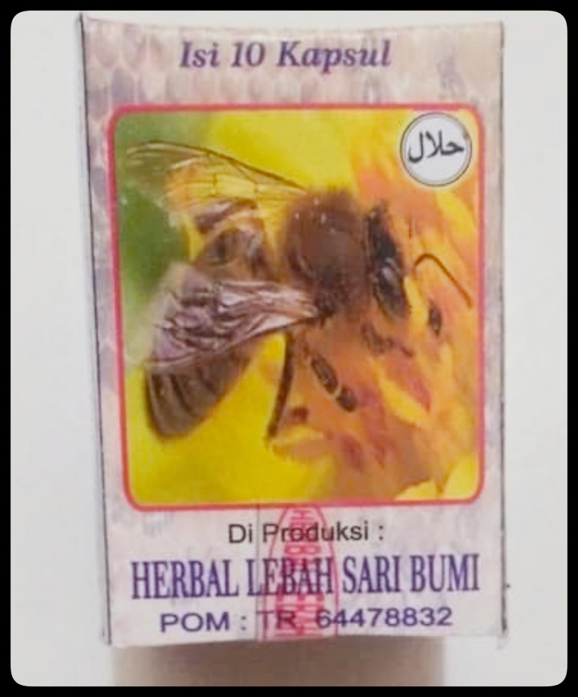 jual kapsul jamu lebah sari bumi di surabaya