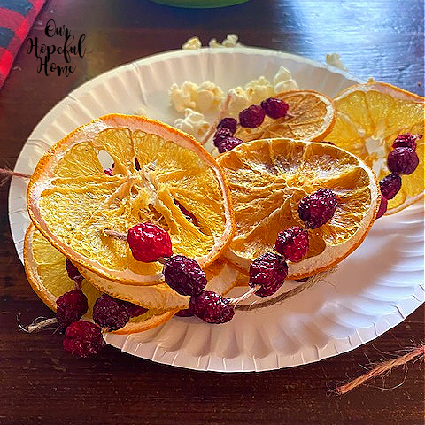 dried orange slice cranberry paper plate