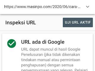 Cara mengetahui artikel apakah sudah diindeks google