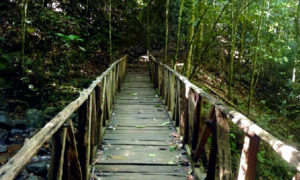 නකියාදේනියා දොල බලන්න යමු (Nakiyadeniya Dola) - Your Choice Way
