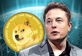 Kenaikan Harga  Dogecoin