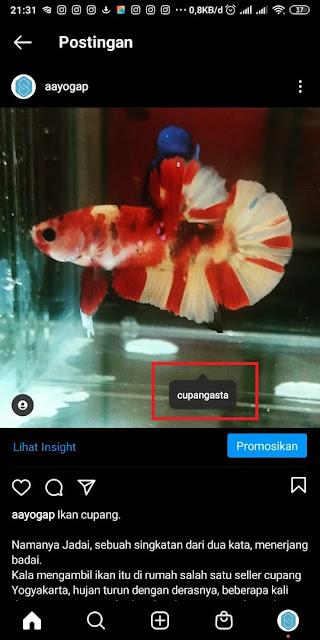 Cara Tag dan Mention di Instagram (3)
