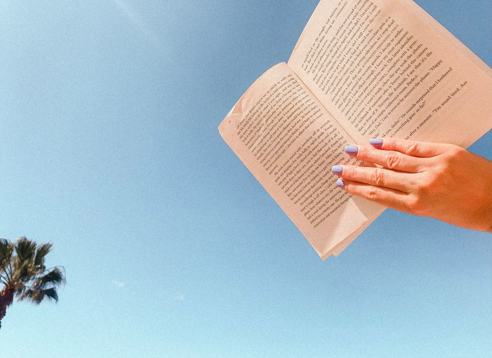 open  book in blue sky with palmtrees
