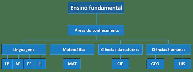BNCC E ENSINO FUNDAMENTAL
