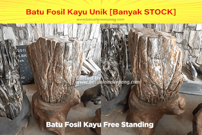 harga batu fosil kayu murah jakarta tangerang
