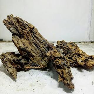 Bagu garang atau batu eragon murah