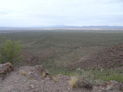Brown Mt. Trail