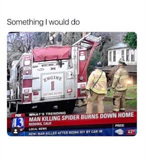 Something I Would do | Funny Meme
