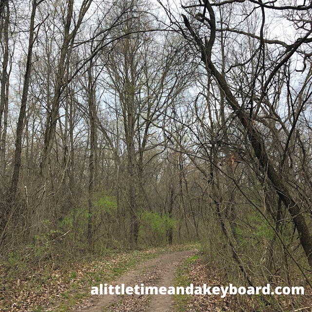 Rustic trails at Beverly Lake Forest Preserve