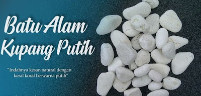 Harga Jual Batu Koral Kupang Putih