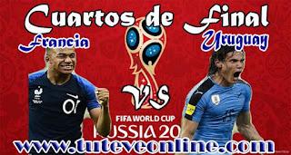 Ver Francia vs Uruguay en vivo