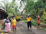 Update Terkini : Akibat Hujan Lebat Disertai Angin, Beberapa Rumah Warga Tertimpa Pohon