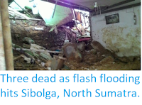 https://sciencythoughts.blogspot.com/2018/03/three-dead-as-flash-flooding-hits.html