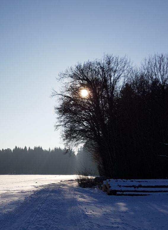 Winterwonderland schneebeckte Landschaft