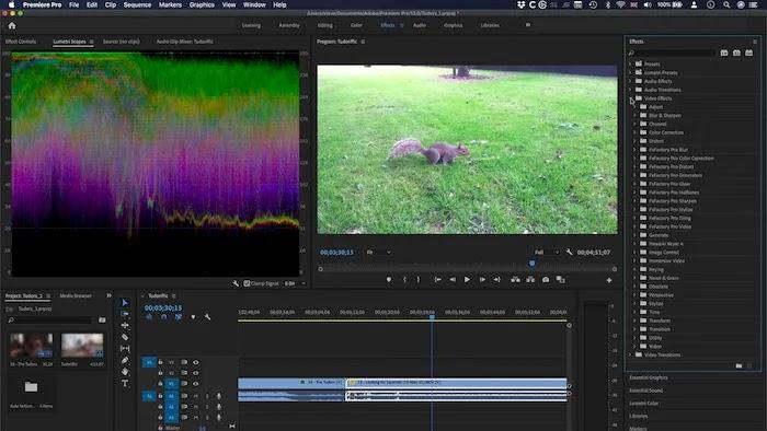 Best Video Compression Apps Adobe Premier