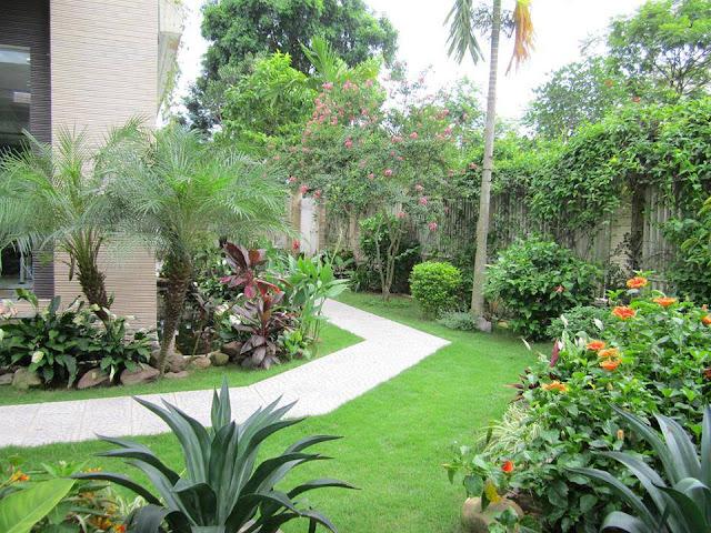 Thiết kế sân vườn biệt thự đẹp và phong thủy