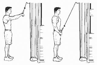 4. Straight Arm Lat Pull Down