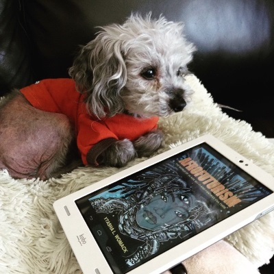 A grey poodle, Murchie, lounges on a sheep-shaped pillow. He wears an orange t-shirt with brown trim and has his front paws tucked underneath him. In front of him is a white Kobo with Afrofuturism's blue-tinted cover on its screen. It features an illustration of a black woman with shiny metal prosthetics around her face and neck. Her hair is thick metal cables.