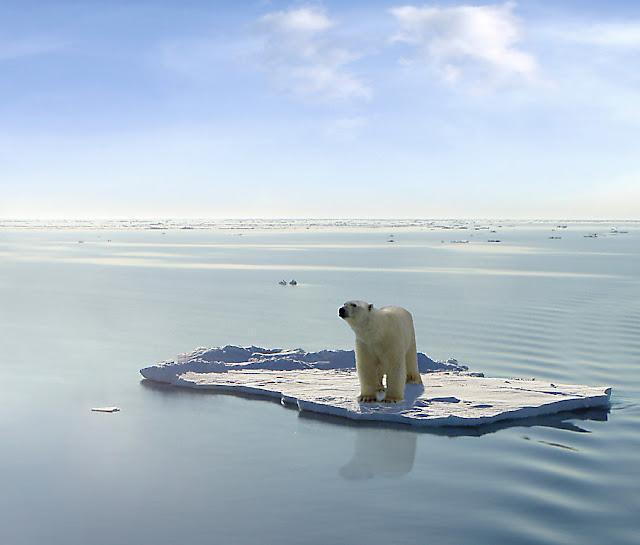 Novo Relatório do IPCC diz que limitar o aquecimento global a 1,5° C exigirá ação drástica