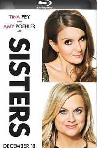 Sisters 2015 Full Movie Donloads 300MB Free