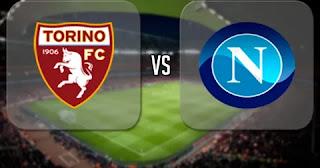 матч Торино - Наполи смотреть онлайн бесплатно 6 октября 2019 прямая трансляция в 19:00 МСК.