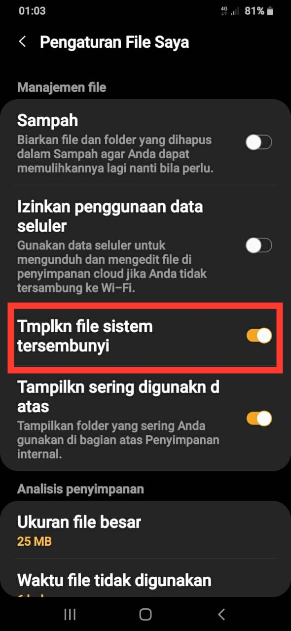 Activation Hidden Files Samsung