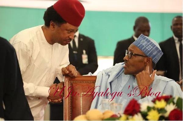 Don't wait for pressure before acting as President – APC Senator, Shehu Sani advises Buhari