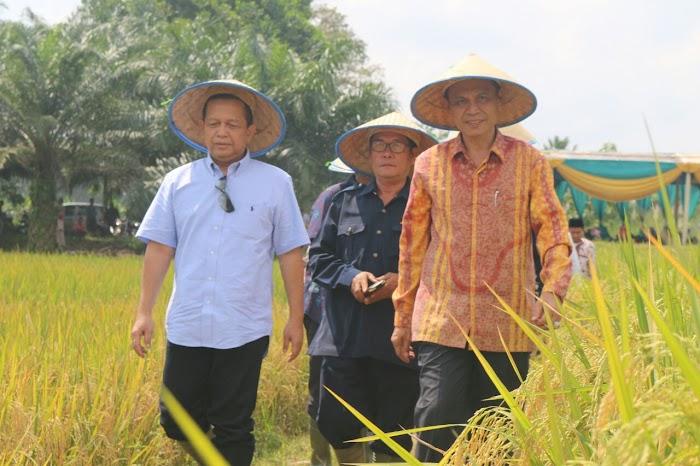Ketua KEIN Soetrisno Bachir Lampung Lumbung Padi Indonesia!