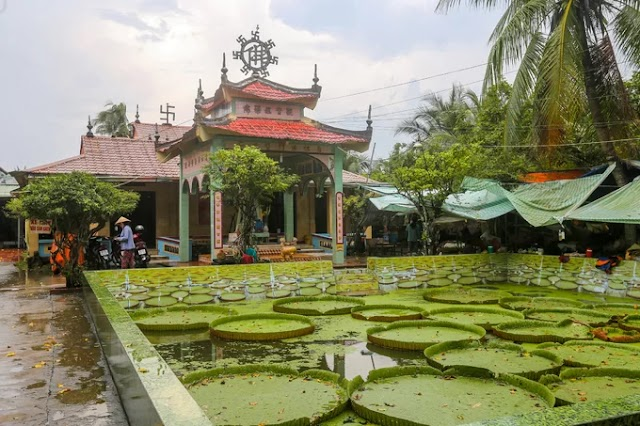 The over hundred-year-old temple for guests standing on lotus leaf