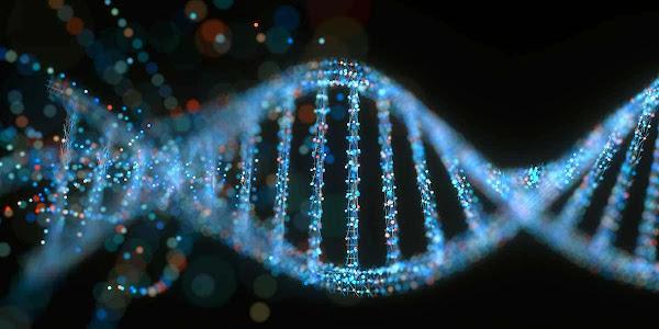 Materi Genetik DNA dan RNA (Pengertian, Struktur, Fungsi, dan Contoh Percobaan)