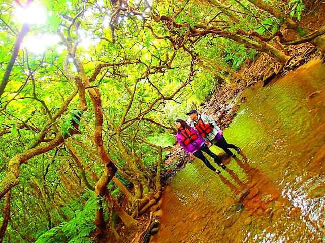 西表・石垣島旅行で西表島ツアーランキング人気のケンガイドがおすすめする西表観光アクティビティツアー・SUPorカヌーでマングローブ&ジャングル探検トレッキングで秘境パワースポット滝巡り!キャニオニングでクールダウン!お得な割引家族旅行や女子旅応援!沖縄で夏休みを遊びつくそう!
