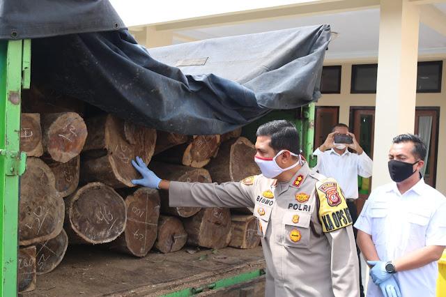 Gondol 97 Batang Kayu Sonokeling Warga Tuban Diamankan Polisi