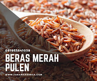 JUAL BERAS MERAH PULEN DI CIPAYUNG - 081953841039