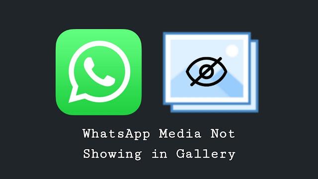 Fix WhatsApp media not showing in gallery