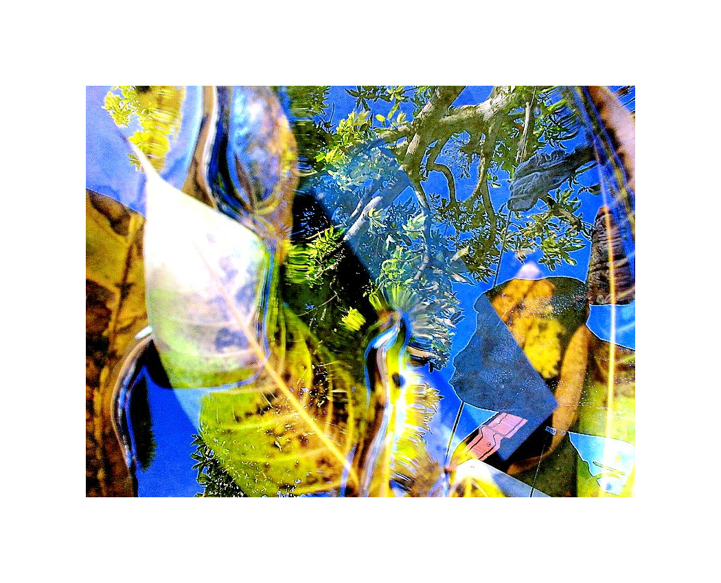 Mobile Photography, Kaleidoscopic 04