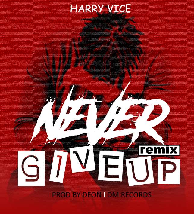 AUDIO | Harry vice - Never Give Up (reMix) | Download - DJ