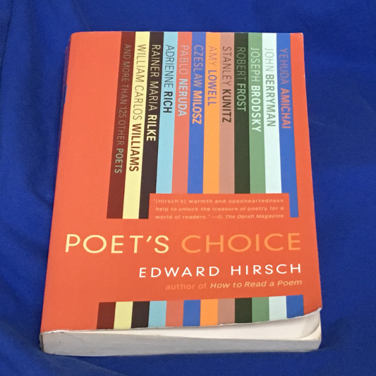 Poet's Choice by Edward Hirsch Paperback Photo