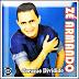 Zé Armando - Coração Dividido
