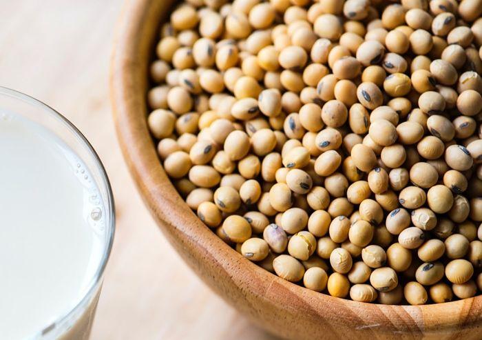 Hidrolización de la soja para la obtención de suplementos alimenticios