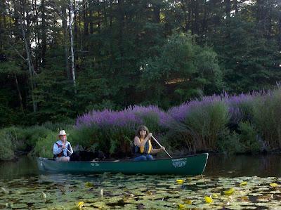 Pam Ciampi in canoe Boston 2011