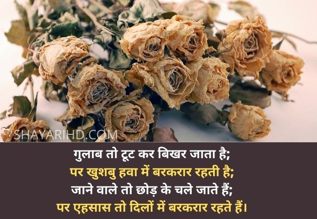 Bewafa Shayari in Hindi for girlfriend 4 line