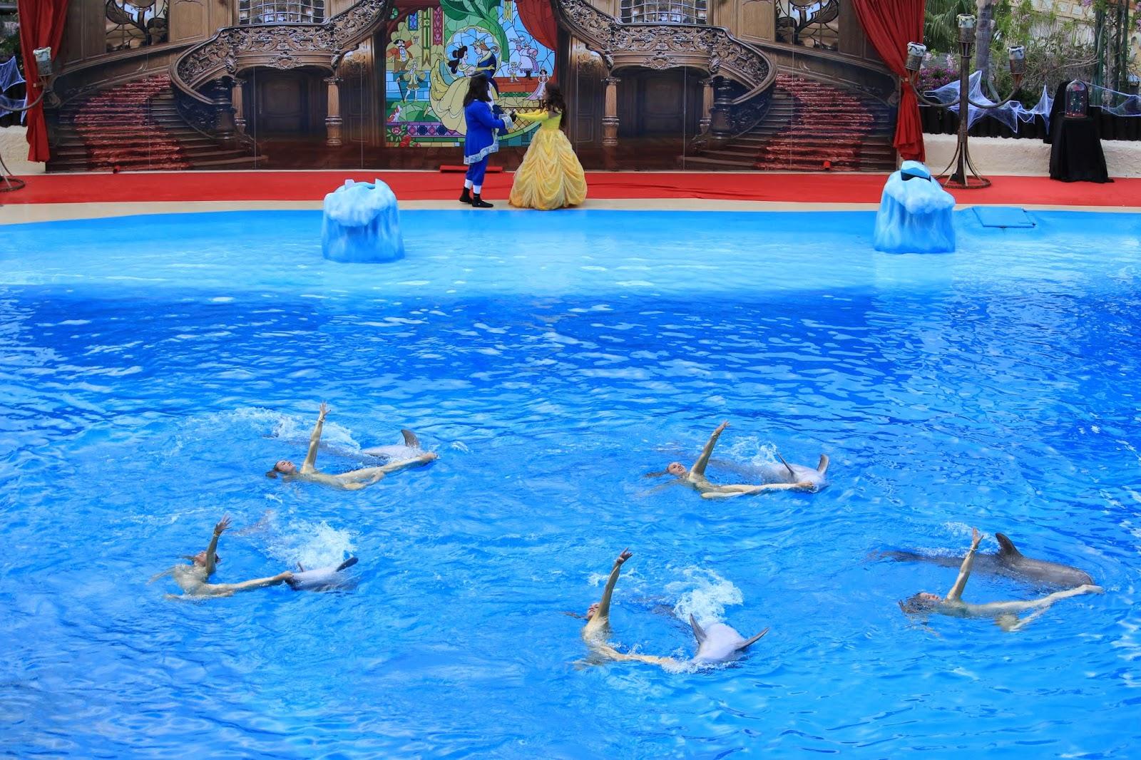 Show de delfines Halloween