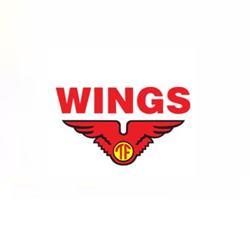 Lowongan Kerja PT Tirta Alam Segar Wings Group Februari 2020