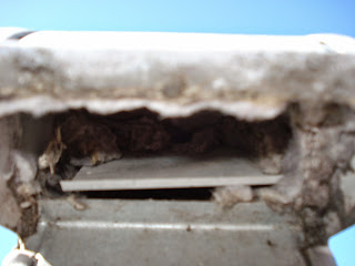 roof inspection, home inspection, Orlando, FL, Orange County, Florida, clogged dryer vent,