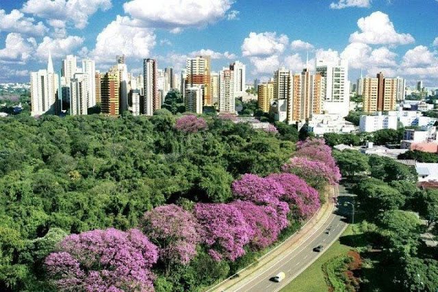 dicas lua de mel Econômica - Sul do Brasil