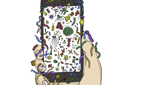 Germs on Phone