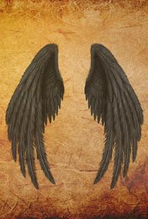 wings photo editor