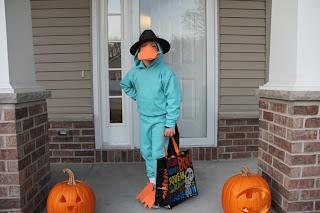 boy dressed up as a plattapus