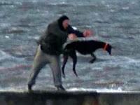 Seorang Pria Tertangkap Kamera Membuang Anjing ke Laut